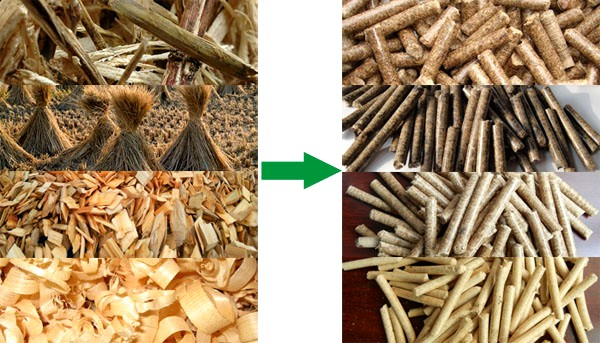 Pellet Mill/ Wood Pellet Mill/Wood Pellet Production Line