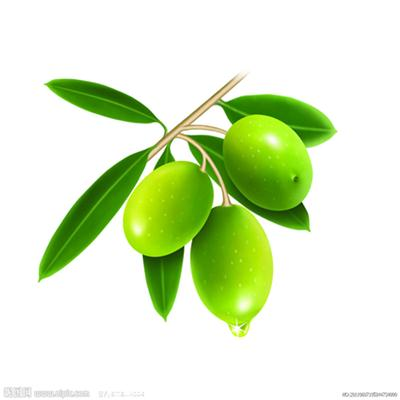 Olive Leaf Extrcts