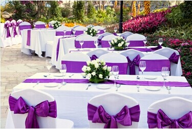 Purple Stain Chair Sashes
