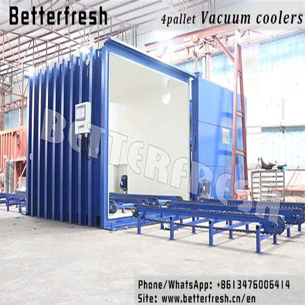Betterfresh high temperature Rapid cooling increase shelf life Precoolers Vacuum coolers for food vegetables Bread Lettuce Broccoli