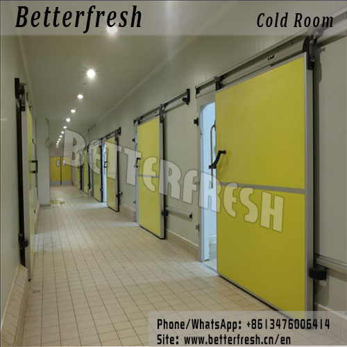 Betterfresh refrigeration preservation cold room