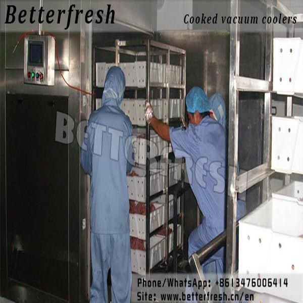 Ready foods & Cooked vacuum cooler