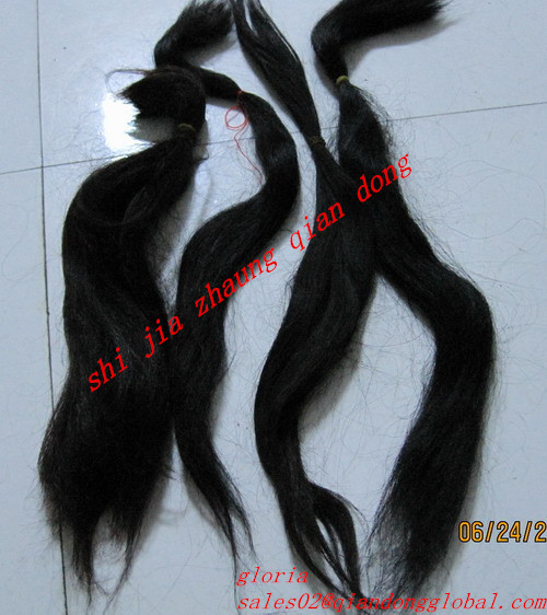 cattle tail hair