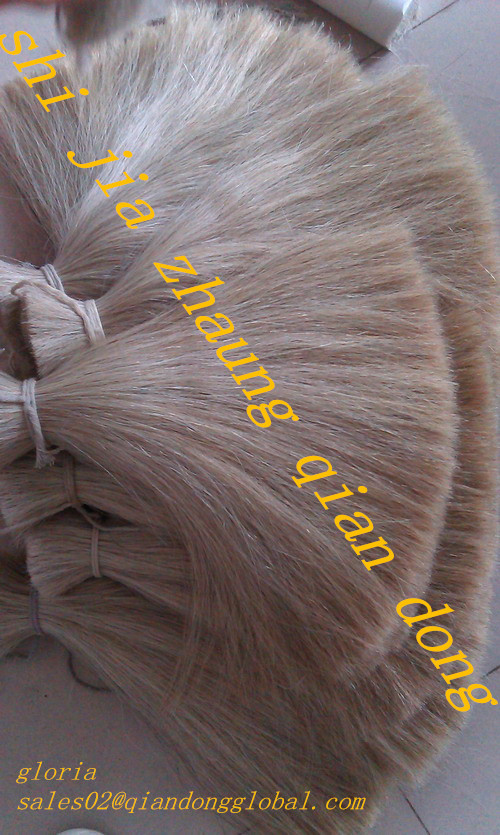 white cattle tail hair
