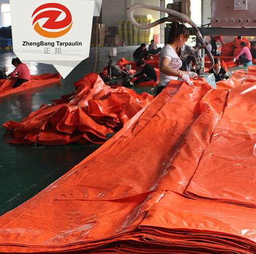 China Clear green Pe Tarpaulin factory