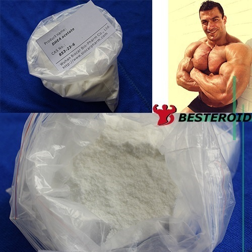 High quality steroid powder  with good price CAS