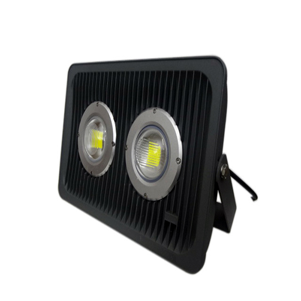 Double Sources LED Flood Light