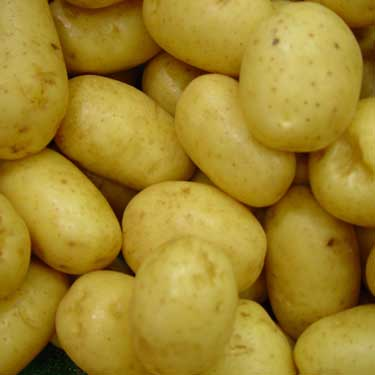 Fresh frozen potatoes