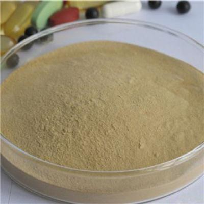 Burdock Tea Powder