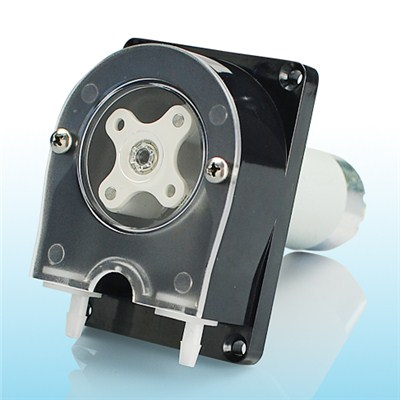 Mini Peristaltic Pumps For Washing Machine OEM206/WP300