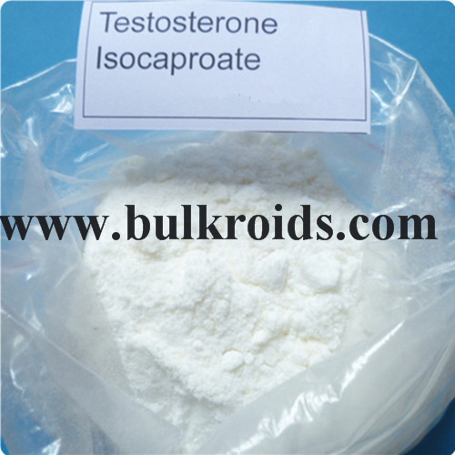 Testosterone Steroid Powder Testosterone Isocaproate