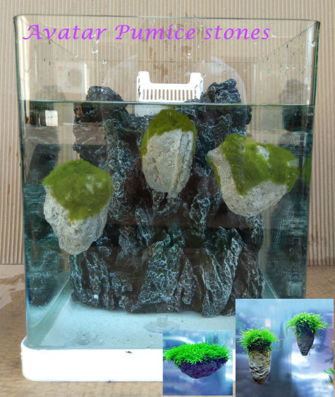 Avatar pumice stone aquarium decoration