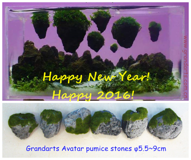 Avatar pumice stone floating stone