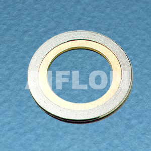 Spiral Wound Gasket With Inner RingSW 6000 IR