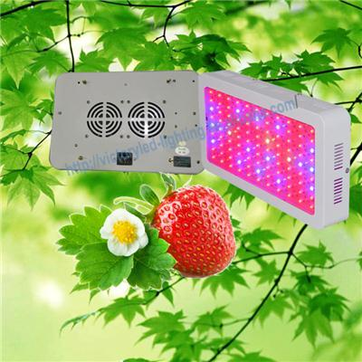 Professional 300w Led Plant Grow Lighting