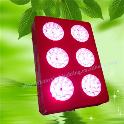Led Growing Lamps