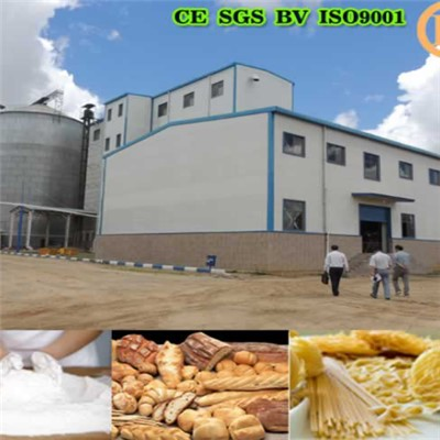 Egypt Wheat Flour Milling Machine 250T Per 24h