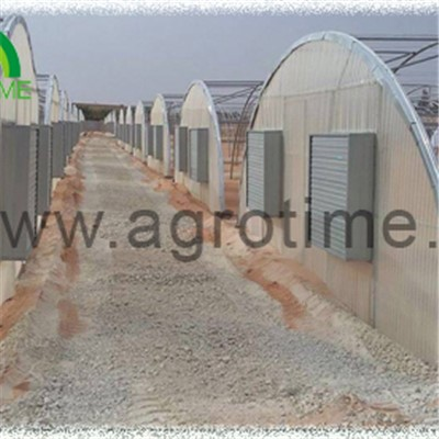 Single Tunnel Polycabonate Greenhouse