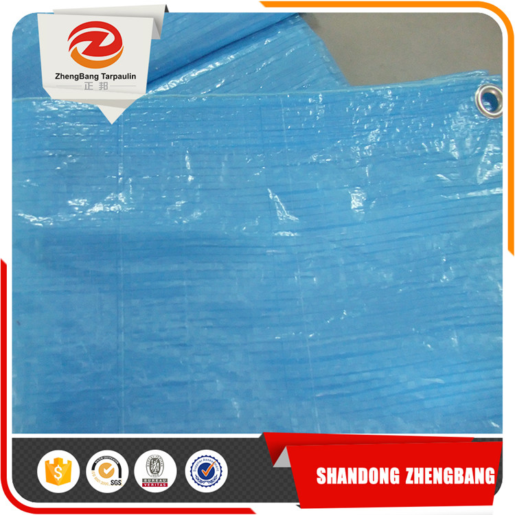 Clear green PE tarpaulin plastic sheet with all specifications