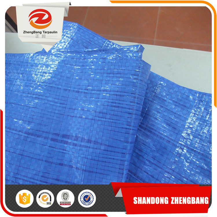 Pe Tarpaulin Sheet Made in China