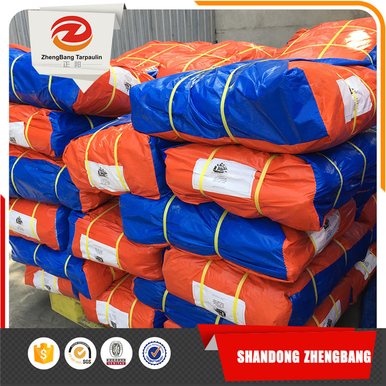PE tarpaulin fabric customized Chinese factory