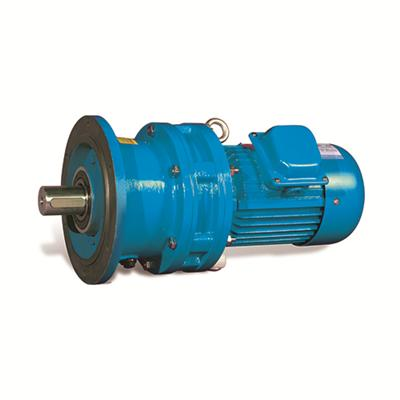 Cycloidal Planetary Gear Speed Reducer