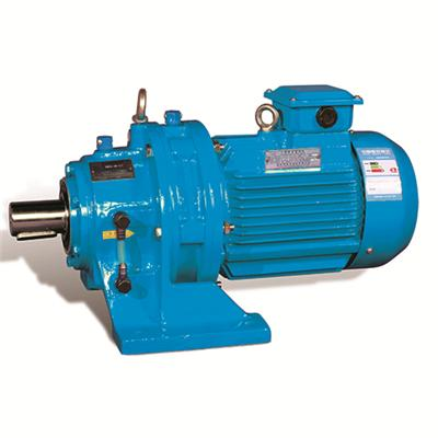 Cycloidal Speed Reducer with Motor