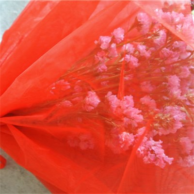 Red Organza Flower Sleeve