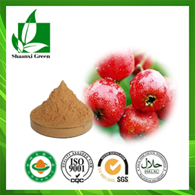 Hawthorn Fruit Juice Powder