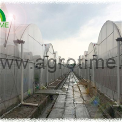 Double Film Plastic Greenhouse