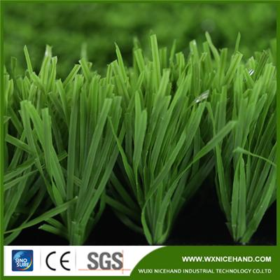 Fruit Green Football Grass