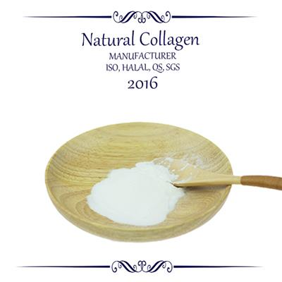 Fish Collagen