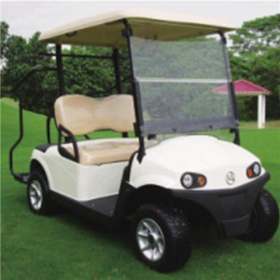 RD﹣2AC+D electric golf cart AC system standard configuration