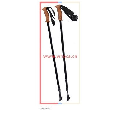 2 Sections Carbon Trekking Poles