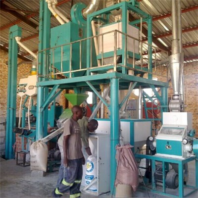 Zambia Maize Meal Machine 10T Per D