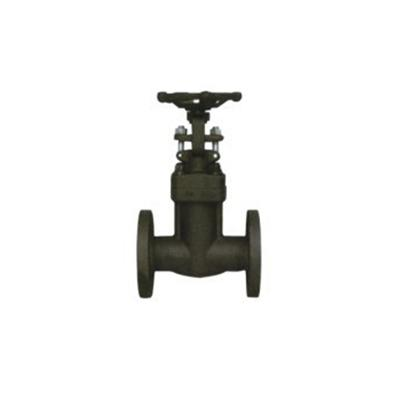 Flange End Integral Forged Steel Gate Valve