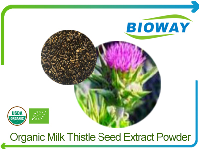 Organic Milk Thistle Seed Extract Powder