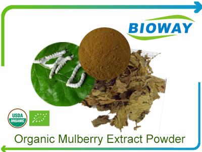 Organic Mulberry Extract Powder