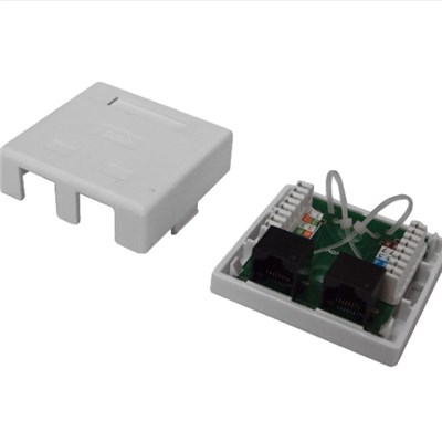 Wall Socket 2Port With UTP Cat5e PCB Module