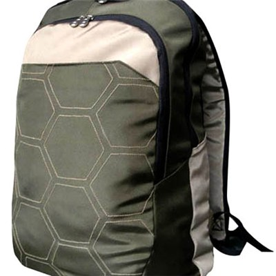 Sport And Travel Bag with Laptop Compartment