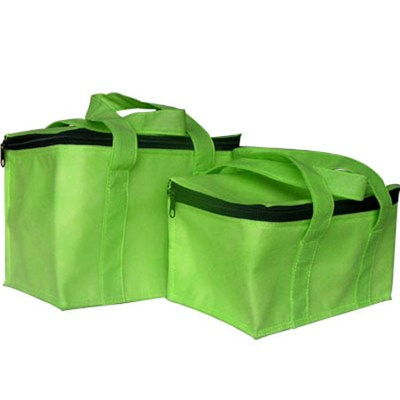 Non Woven 12 Pack Cooler Bag