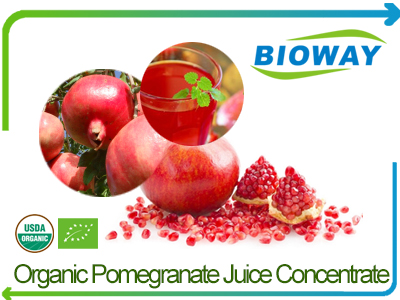 Organic Pomegranate Juice Concentrate