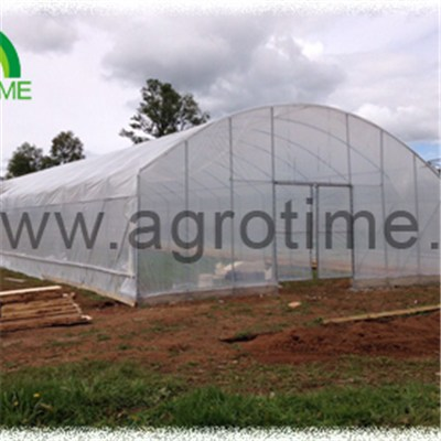 Cucumber Plastic Greenhouse