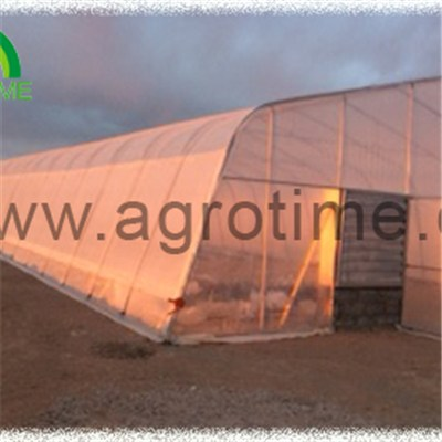 Single Tunnel Plastic Greenhouse