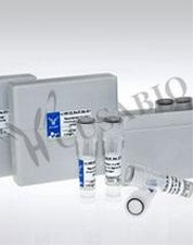 Human Serine/threonine-protein kinase B-raf(BRAF) ELISA kit