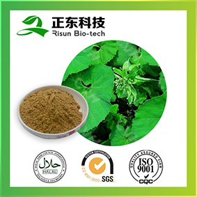 Butterbur Extract