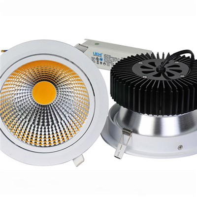 50W Sunflower COB LED Downlight