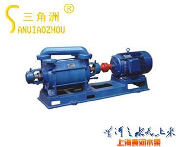 2SK Twin-stage Water Ring Vacuum Pump