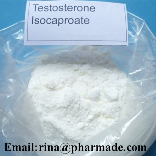 Pure Testosterone Isocaproate Anabolic Steroid from rina@pharmade.com