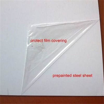 PPGL Protected With PE/PVC Sheet